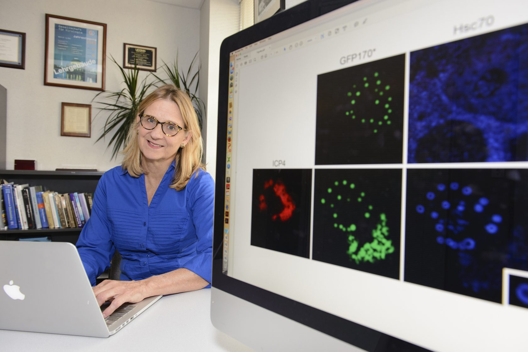 Sandra K. Weller, Ph.D., Professor of Molecular Biology, Chair of the Department of Molecular Biology and Biophysics.