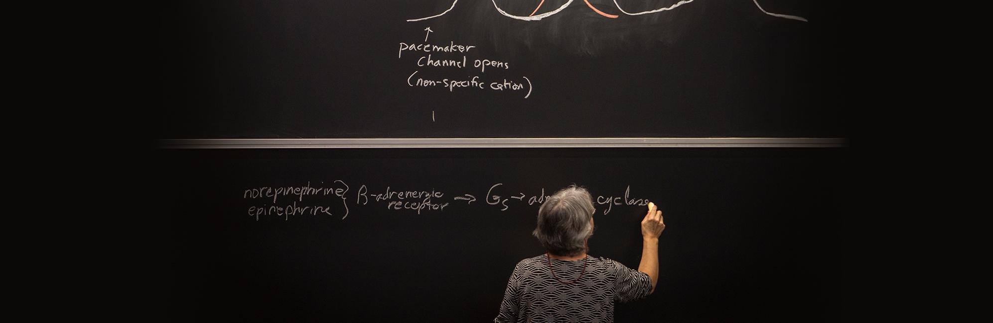 UConn Health teacher writing on blackboard