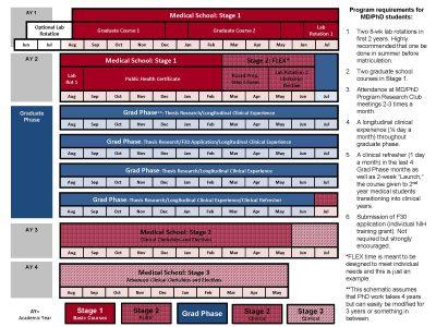 MD/PhD Curriculum chart